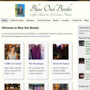 Blue Owl Books - Website Visitors and Analytics