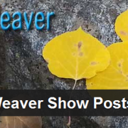 Weaver Show Posts Plugin